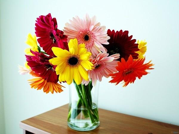 fleurs,flowers,tubes,bouquets