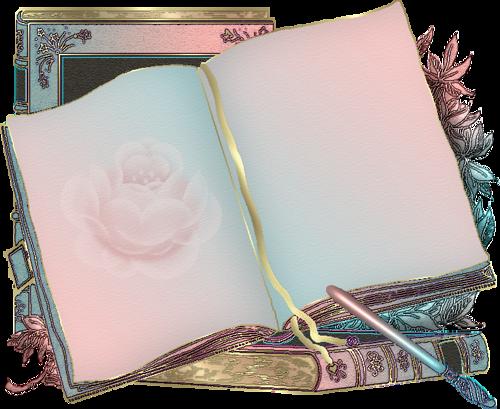LIBROS - CUADERNOS - Página 6 06b94d3d