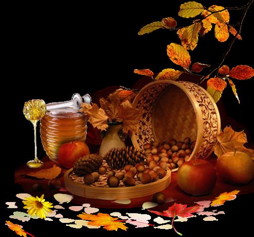 automne,autumn