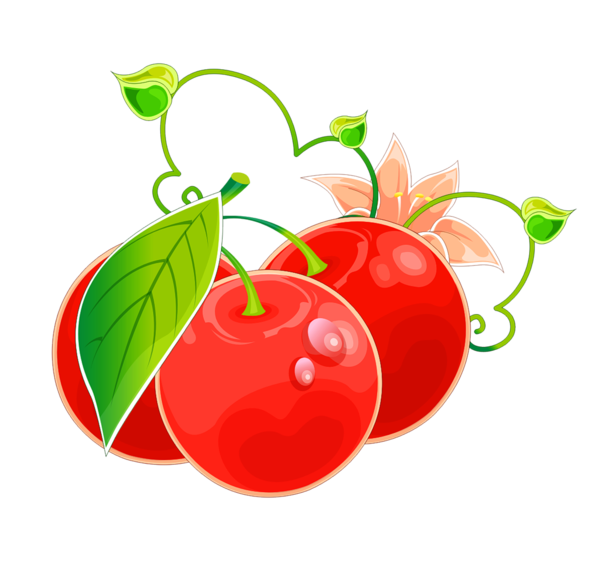 fruits ,tubes