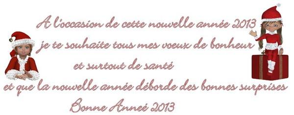bonne annee,2013
