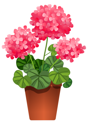 fleurs, éclat, ornement, flowers, tubes, bouquets,