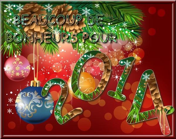 bonne année - Page 4 2506e4f9