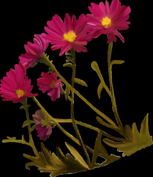 fleurs,tube,flowers,png