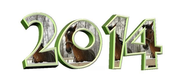 2014,bonne annee