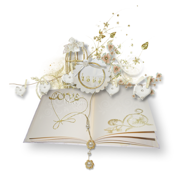 livres,guestbook