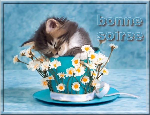 Bonjour/bonsoir de Janvier 6017ea05