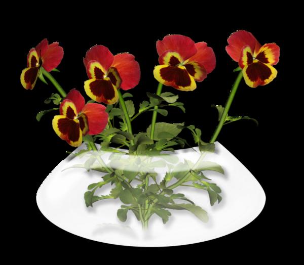 fleurs,bouquets,flowers,flores,blommor,fiori