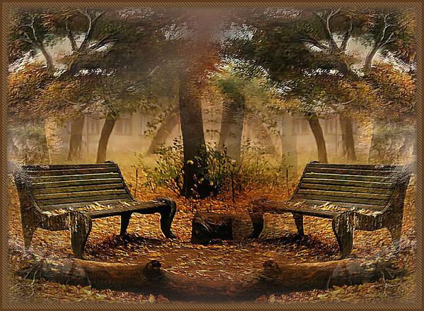 automne,paysage,fall,autumn