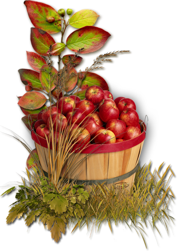 pommes,png,fruits