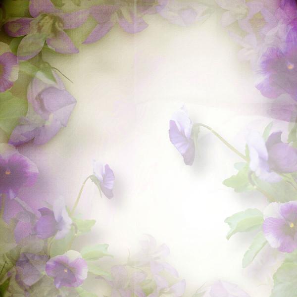 Je vois la vie en mauve violet parme page 125 supertoinette for Mauve la vie claire
