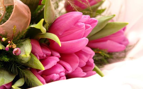 fleurs,flowers,wallpapers,fond d ecran,bouquet