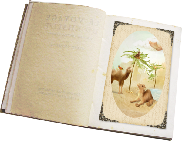 LIBROS - CUADERNOS - Página 3 80523715