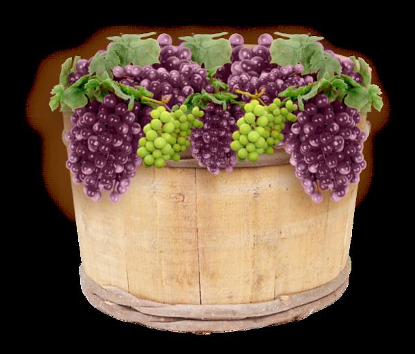 raisins,fruits