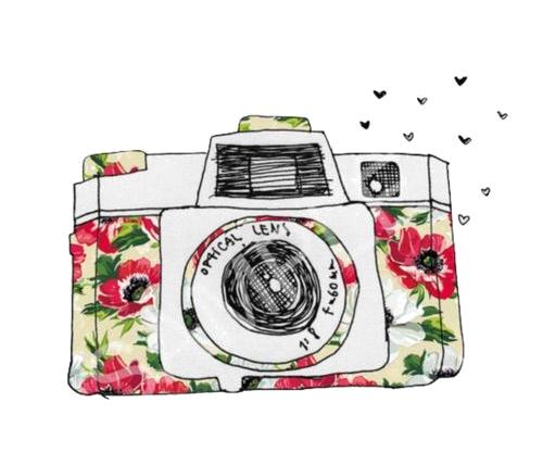 سكرابز كاميرات 2017 a81cdb51.png