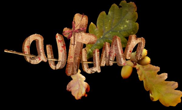 automnes,autumn,otoño,outono