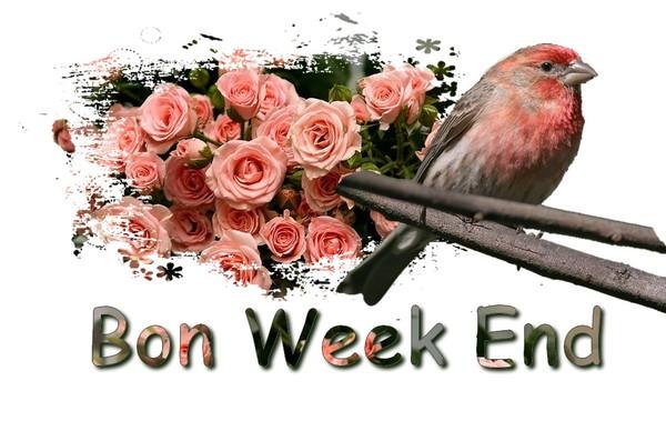 """Résultat de recherche d'images pour """"tres belles images bon week-end"""""""
