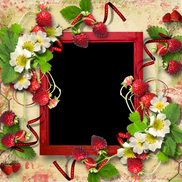 frames cadres pour creas cadres vierges
