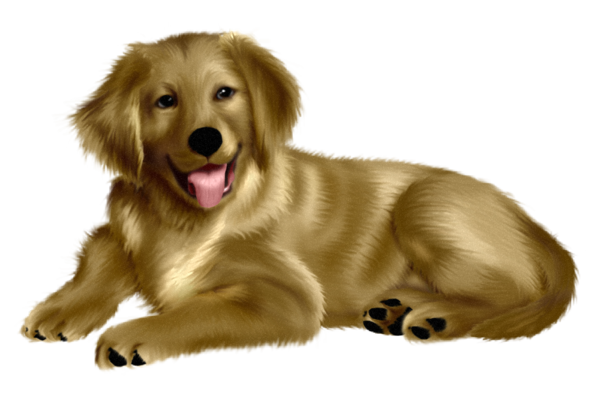 chiens,dog,puppies,wallpapers