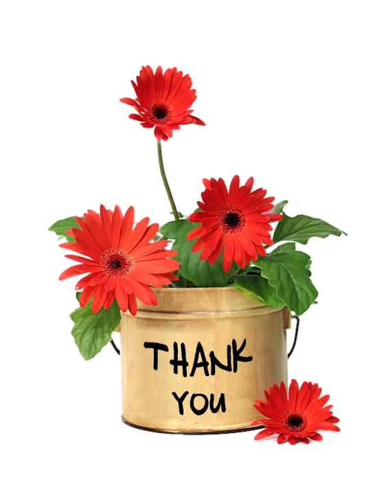 ,thank you,fleurs,merci