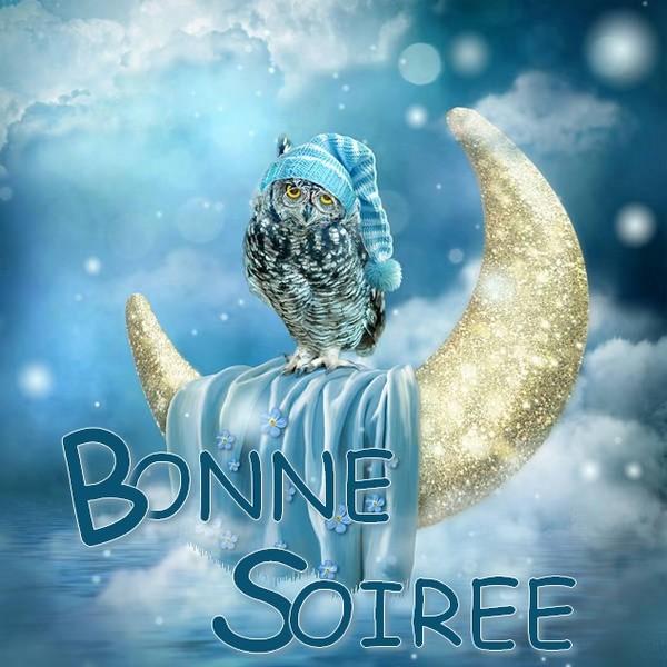 bonne nuit !!! - Page 51 Dd9c3b21