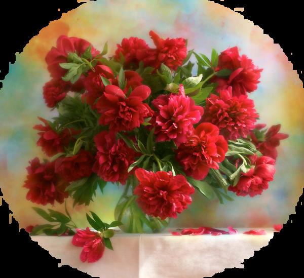 tubes fleurs,bouquets,flowers