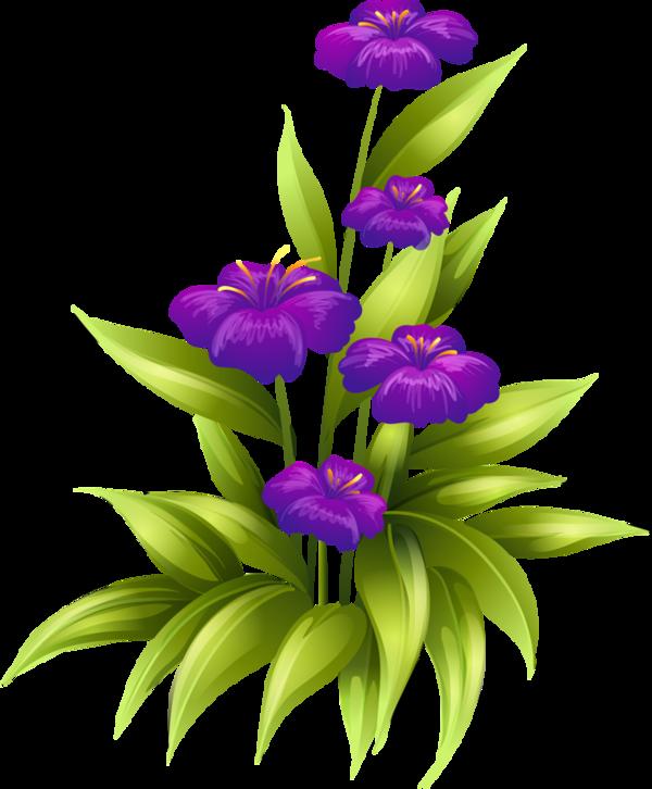 le 20 02 2015 21 46 par zezete2 tags fleurs tube flowers png