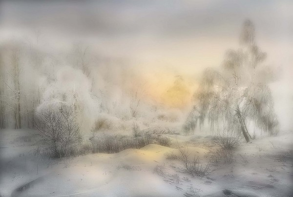 hivers,neiges,paysages,winter,