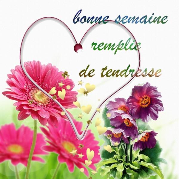 http://zezete2.z.e.pic.centerblog.net/f403c21d.jpg