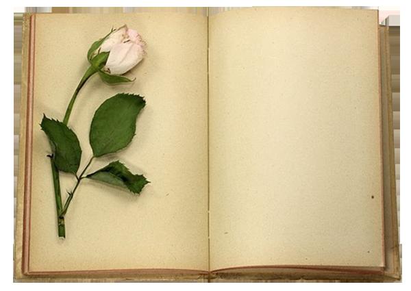 LIBROS - CUADERNOS - Página 25 F94f31c1
