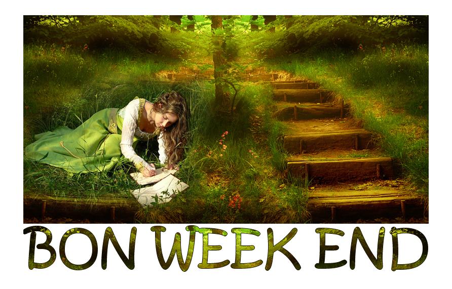 Bon week end page 4 - Bon week end a tous ...