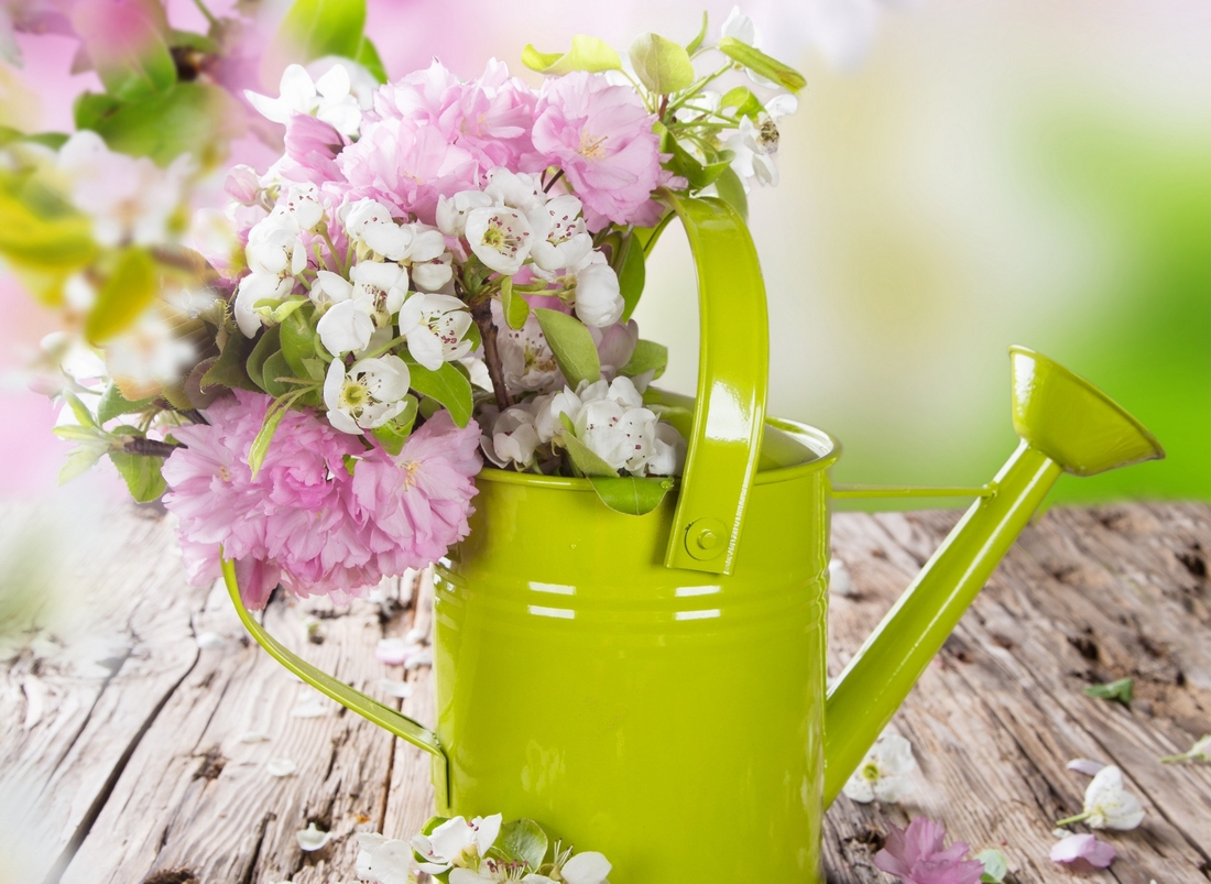 fond d ecran bouquets fleurs flowers wallpapers. Black Bedroom Furniture Sets. Home Design Ideas