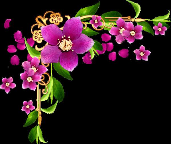 bordures coins corners fleurs