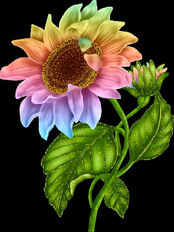 Fleurs for Pinterest flur