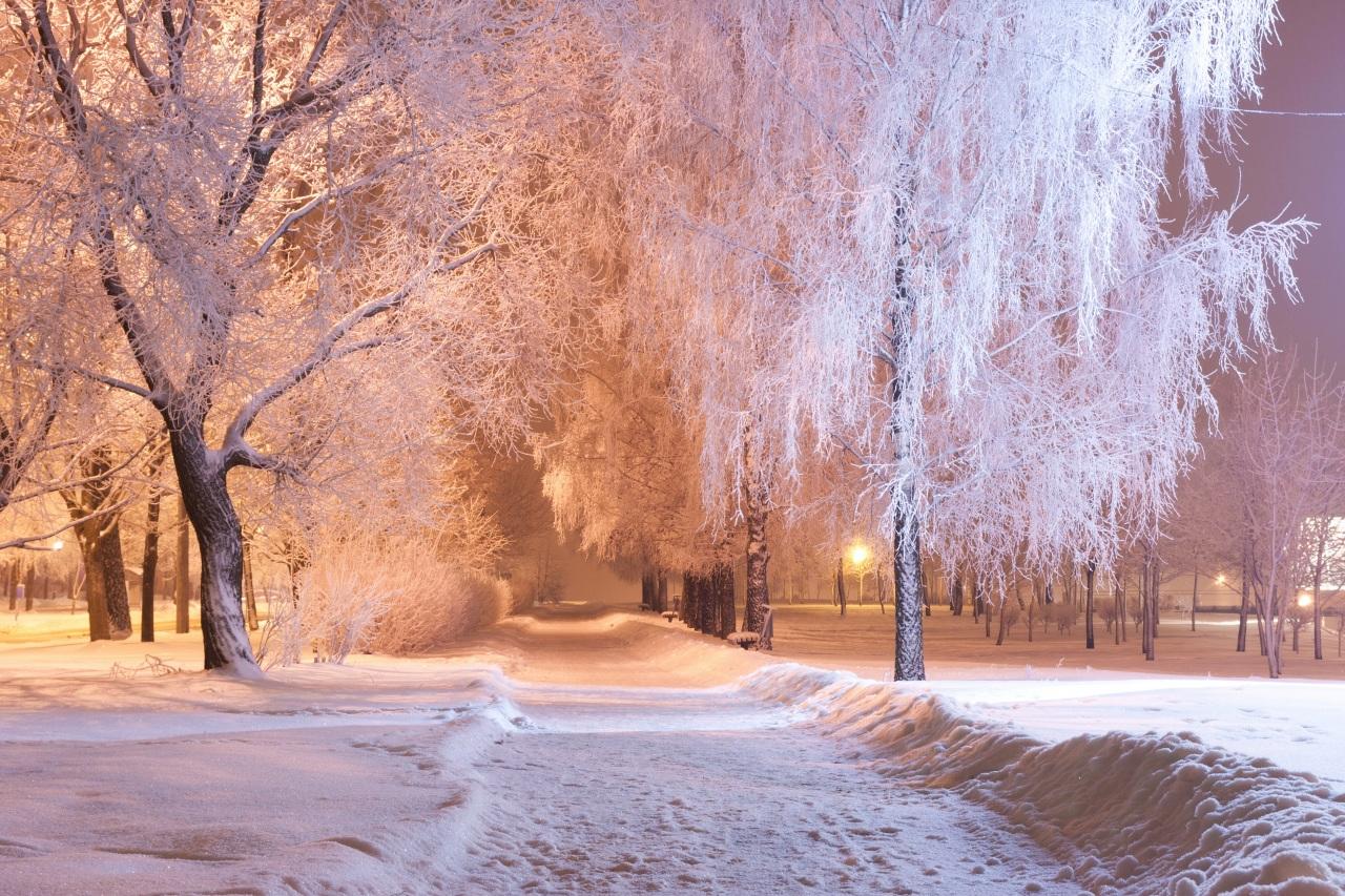 Пейзаж снег