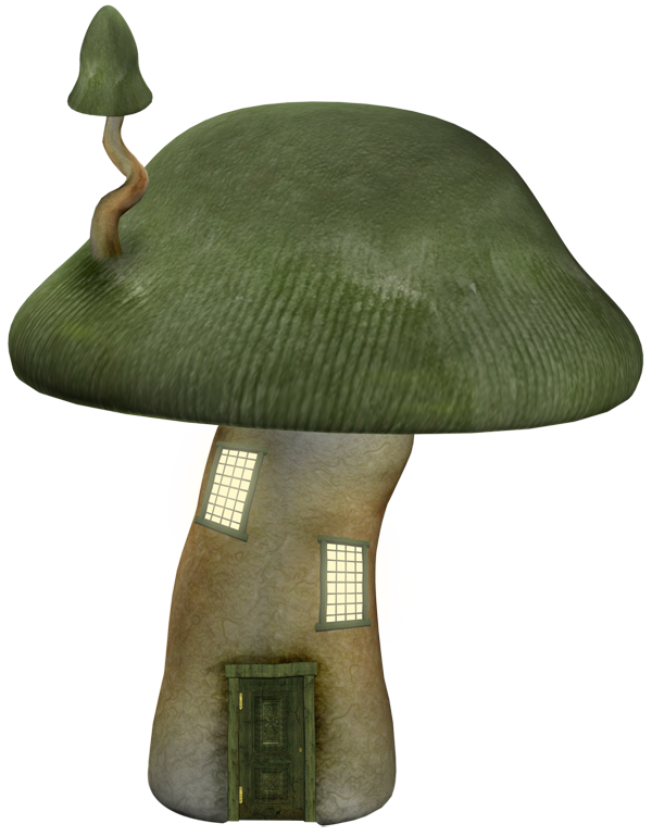 mushroom tube
