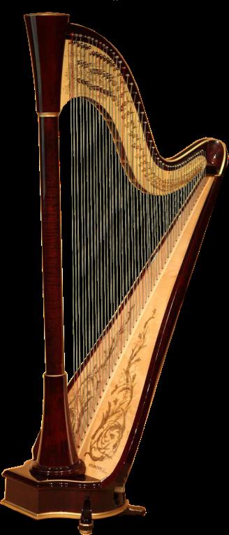 Instruments de musique page 15 - Photo d instrument de musique ...