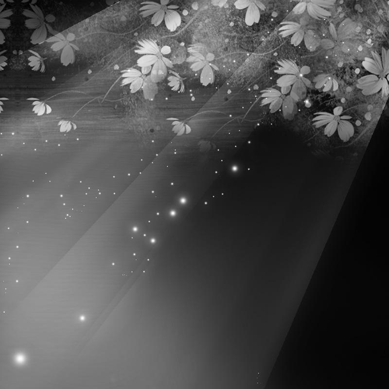 Mariage en noir et blanc Df4d52e7